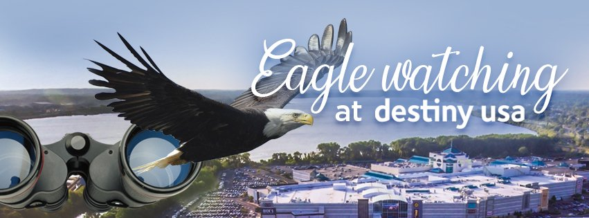 2021 02 05 dusa eagle fb header